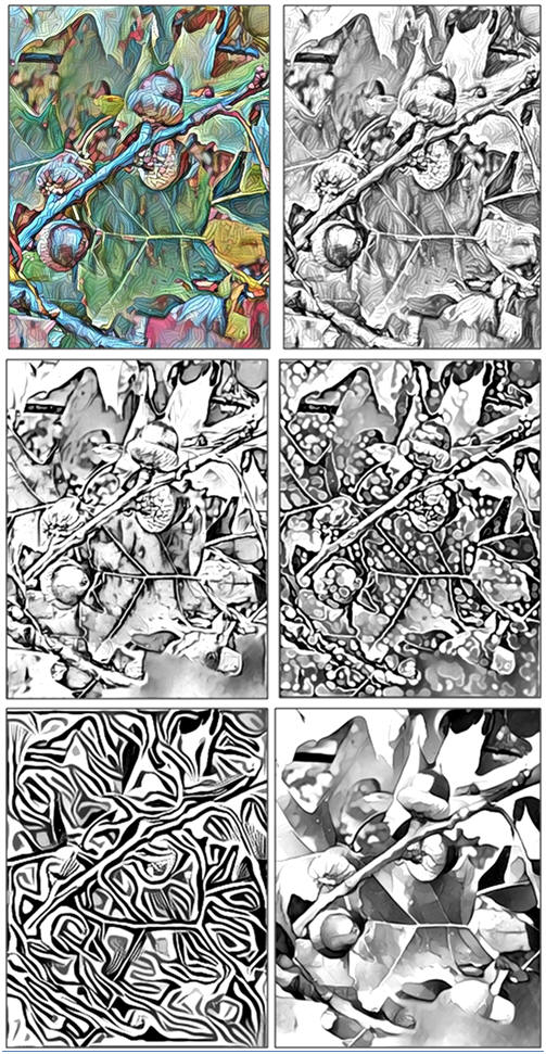 Print and Color Any of Five Free Coloring Pages: Fall Acorns, by Don Berg at TodaysArts.net