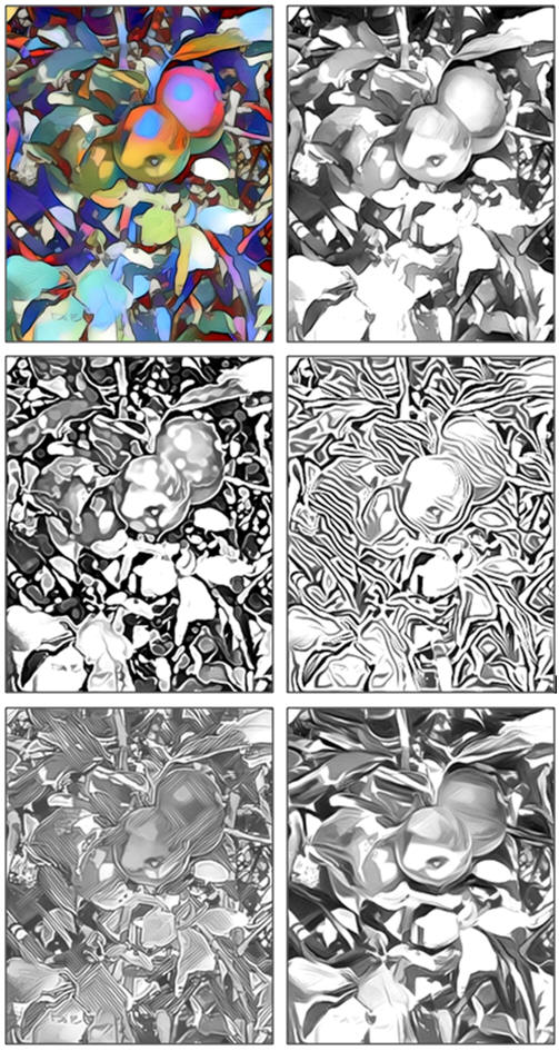 Free Fun Coloring Pages in Five Different Styles: Wild Apples, by Don Berg at TodaysArts.net