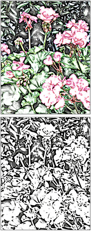 Create a scene of geraniums in a garden with colored pencils, crayons, watercolors, pastels, markers or watercolor pencils. Print a free coloring or paint-over page at TodaysArts.net