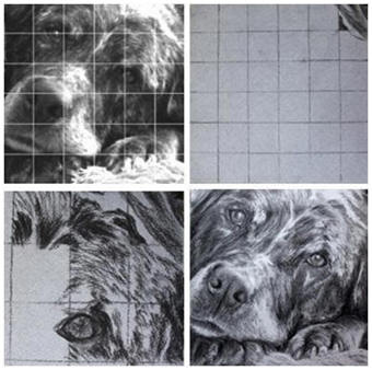 Here's a free lesson on how to use the classic grid method to create a drawing from a photograph, or anything else. Check it out at Learn-To-Draw-Lessons.com